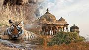Enjoy Pleasant Journey Of Golden Triangle Of India