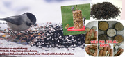 Wholesale trader of bird food